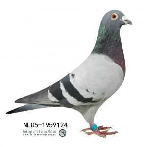 NL05-1959124